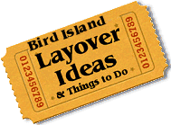 Stuff to do in Bird Island