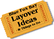 Stuff to do in Blue Fox Bay