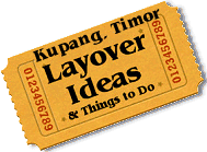 Stuff to do in Kupang, Timor